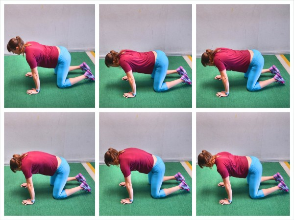 quadruped shoulder circles